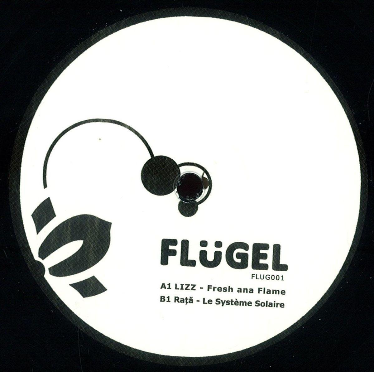 V/A – Flügel 001 (Flug001)