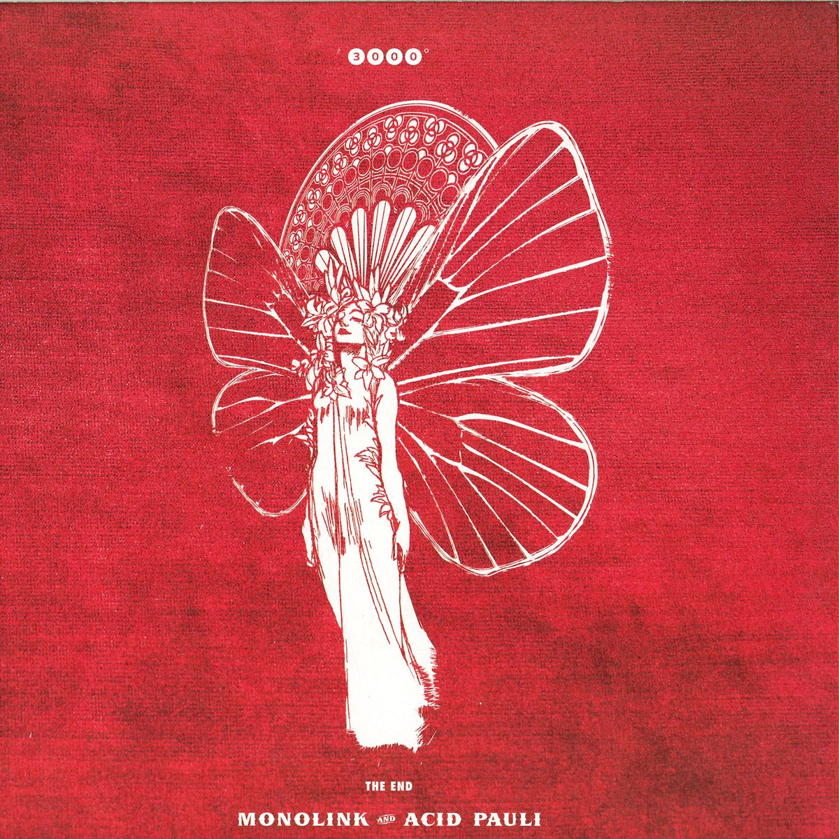 Monolink & Acid Pauli – The End (3000° Records)