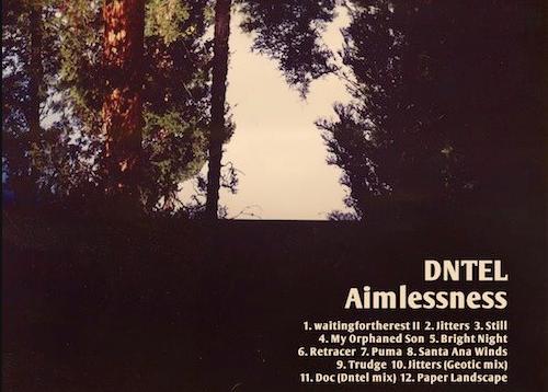 Neues DNTEL-Album erscheint auf Pampa Records
