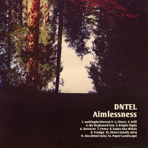 DNTEL – Aimlessness (Pampa Records)