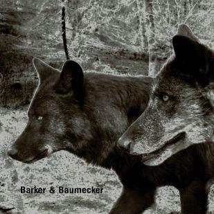 """Neues aus dem Hause Ostgut Ton: Baker & Baumecker mit """"Transsektoral"""""""