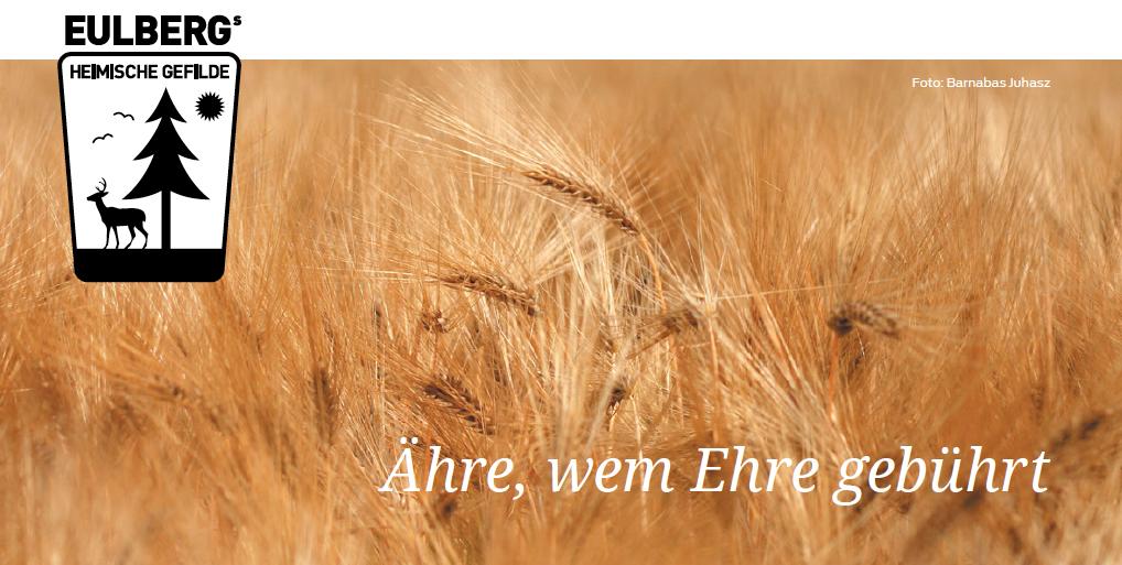 Eulbergs heimische Gefilde: Ähre, wem Ehre gebührt