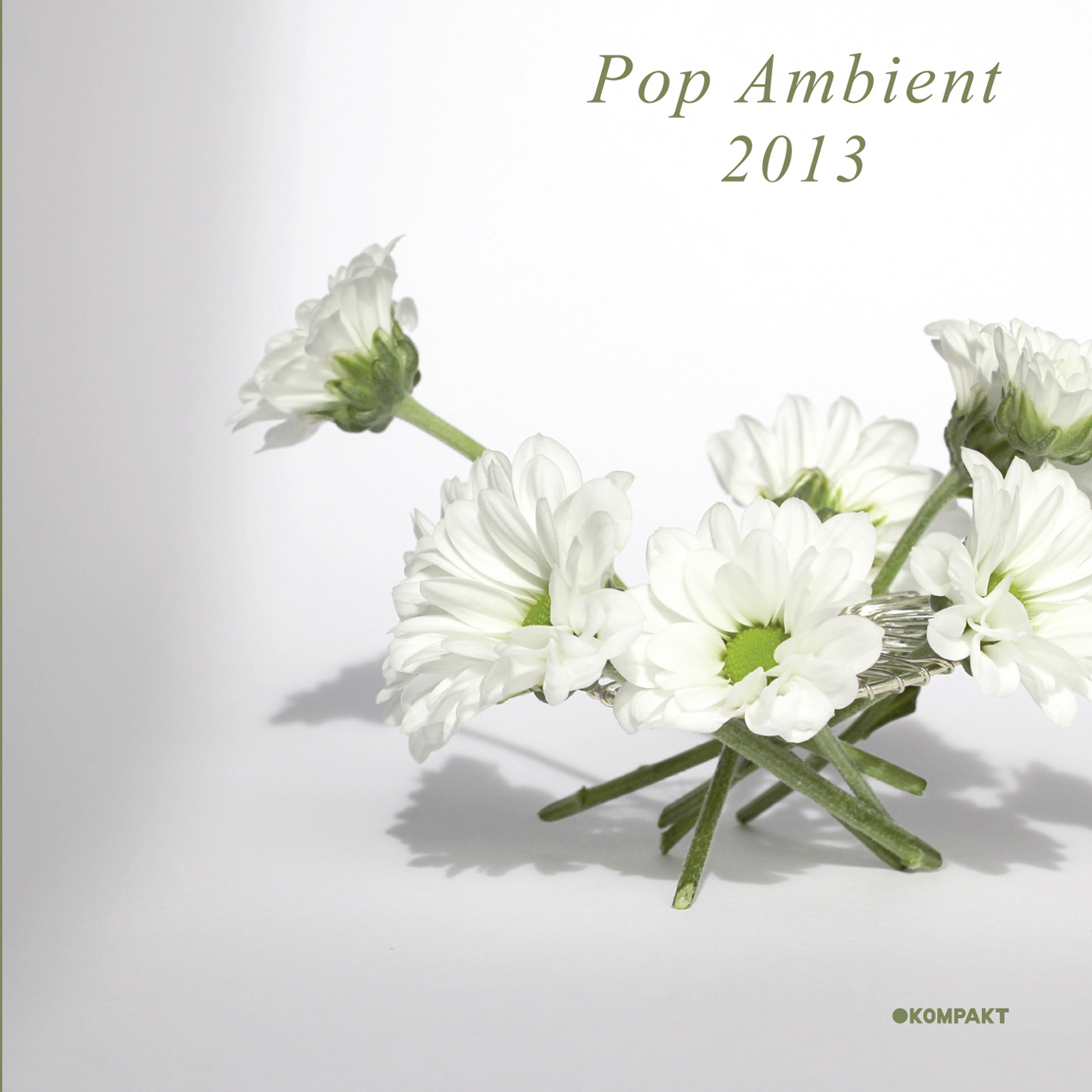 """Wolfgang Voigt startet das neue Jahr mit """"Pop Ambient 2013"""" (Kompakt)"""
