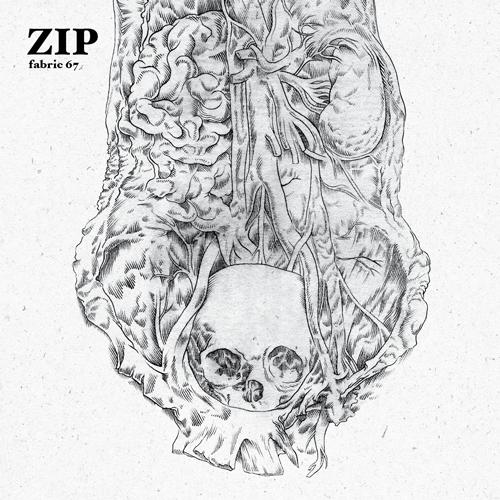 Zip liefert 67. Fabric-Ausgabe