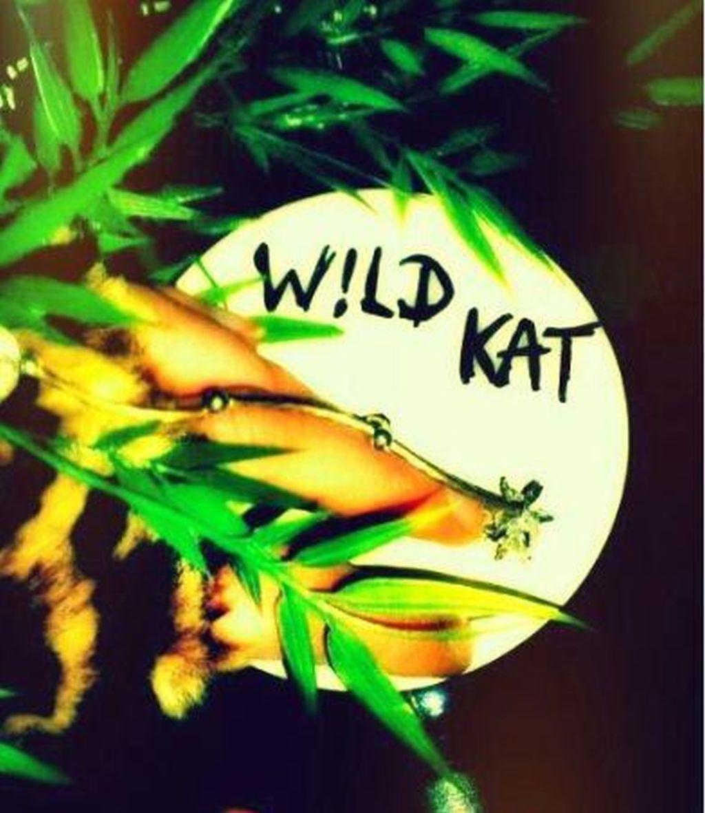 W!LD KAT (Cubetribe Records/FAZE) – DJ-Charts Februar 2013
