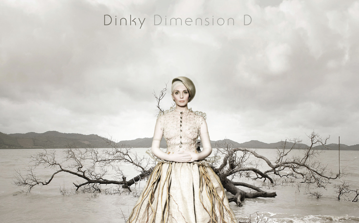 Dinky – Dimension D (Visionquest)