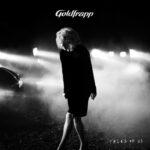 goldfrapp (2)