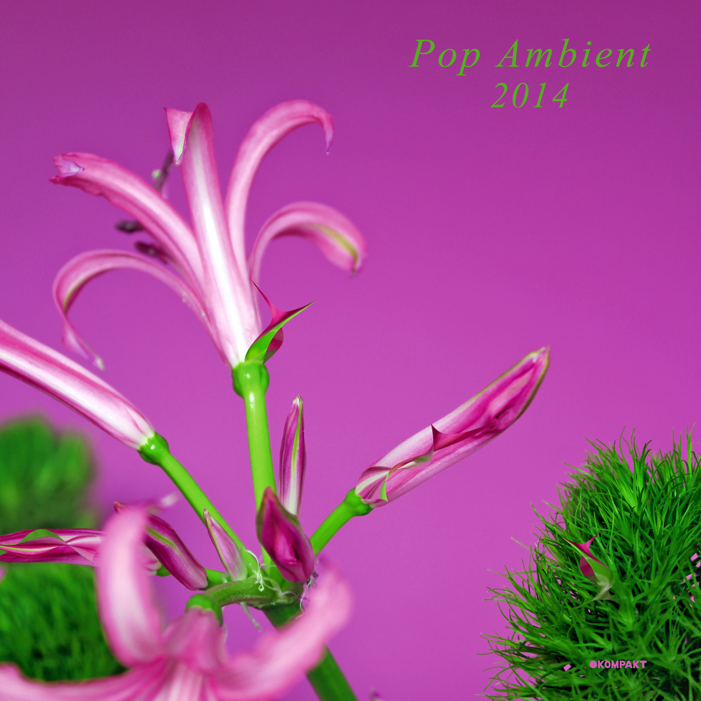"Wolfgang Voigt präsentiert uns ""Pop Ambient 2014"""