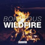 7. Borgeous - Wildfire ( DOORN )