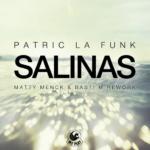 3. Patric La Funk - Salinas ( Matty Menk & Basti M Rework ) WePlay