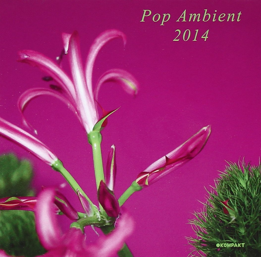 Wolfgang Voigt – Pop Ambient 2014 (Kompakt Records)