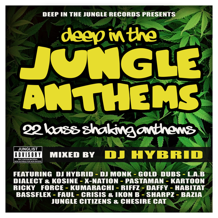 V.A. – Deep In The Jungle Anthems (DEEPIN012)