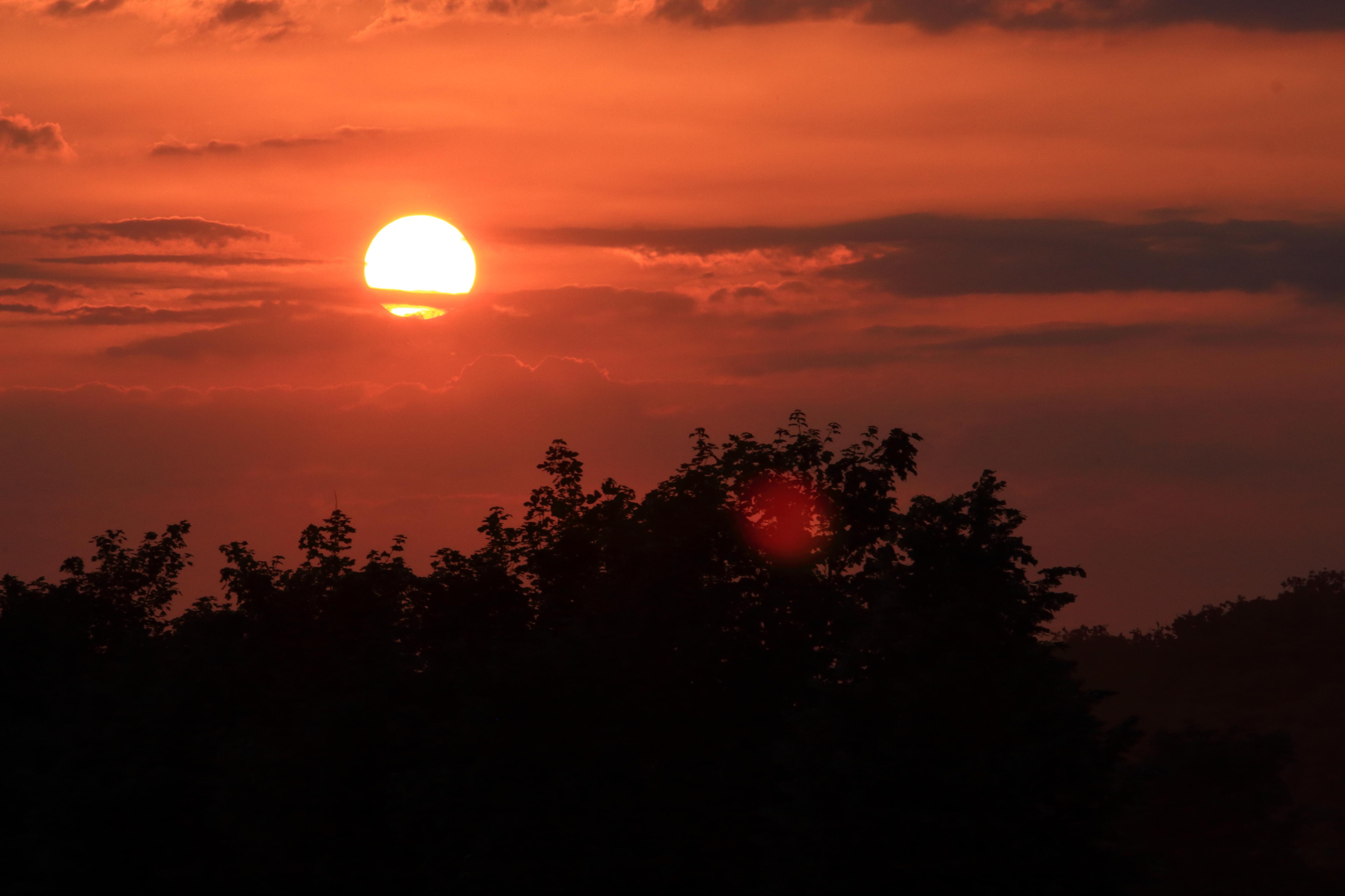 Manege frei für das Red Sun Festival