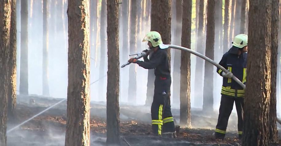 Her Damit Festival bei Berlin wegen Waldbrandgefahr verschoben